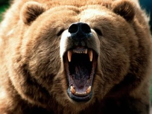 Mama bear. Get it?
