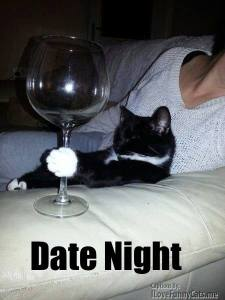 Date night with a cat